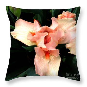 Pink Iris Throw Pillow by The Art of Alice Terrill