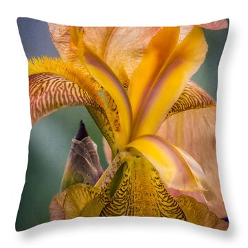 Pink Iris Throw Pillow by Eduard Moldoveanu