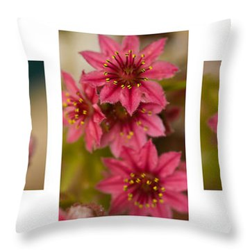Pink Joy Throw Pillow by Trevor Chriss