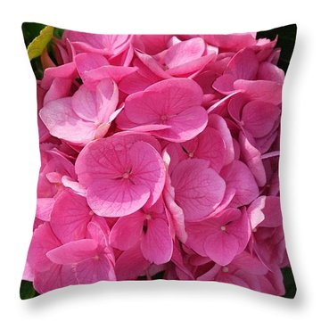 Throw Pillow featuring the photograph Blushing Rose by Jeannie Rhode