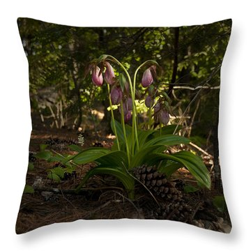 Throw Pillow featuring the photograph Pink Lady Slipper 2 by Daniel Hebard