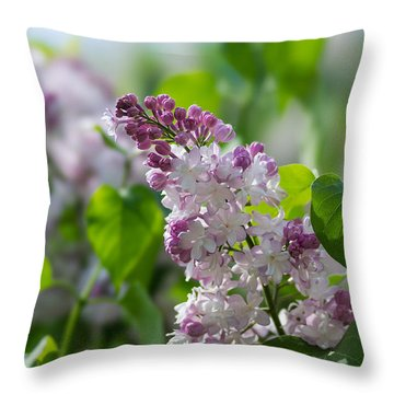 Pink Lilacs And Green Leaves - Featured 3 Throw Pillow by Alexander Senin