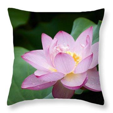 Pink Lotus Flower Throw Pillow by Oscar Gutierrez
