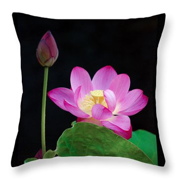 Pink Lotus Flowers Throw Pillow