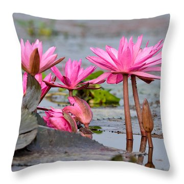 Pink Lotuses Throw Pillow by Fotosas Photography