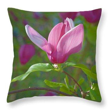 Pink Magnolia Blossom Throw Pillow by Ram Vasudev