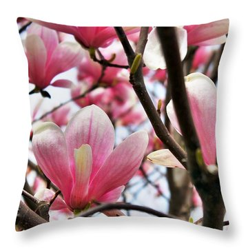 Throw Pillow featuring the photograph Pink Magnolia  by Judy Palkimas