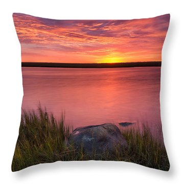 Pink Marsh Throw Pillow