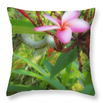 Throw Pillow featuring the photograph Pink On Green by Joseph Hollingsworth