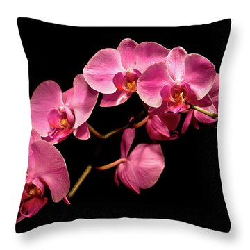 Pink Orchids 3 Throw Pillow