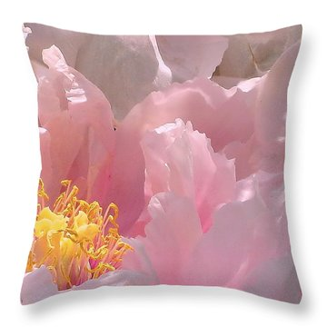 Pink Peonies 2  Throw Pillow