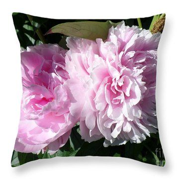 Pink Peonies 3 Throw Pillow