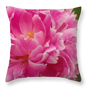 Throw Pillow featuring the photograph Pink Peony by Suzanne Powers