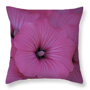 Pink Petunia Throw Pillow