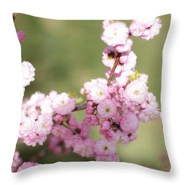 Pink Plum Branch On Green 2 Throw Pillow