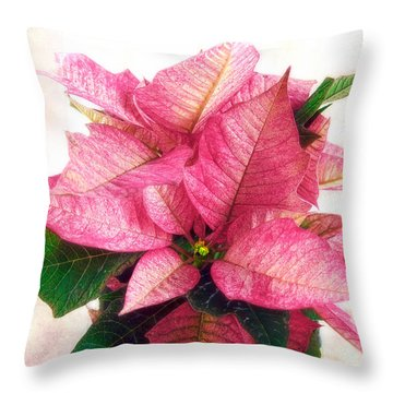 Pink Poinsettia Throw Pillow by Louise Kumpf