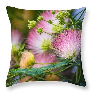 Pink Pom Poms Throw Pillow