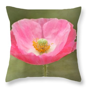 Pink Poppy Flower Throw Pillow by Kim Hojnacki