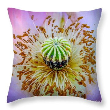 Pink Poppy Squared Throw Pillow by TK Goforth