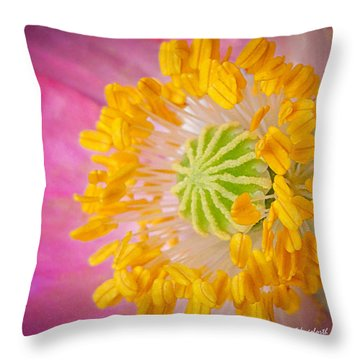 Pink Poppy Too Squared Throw Pillow