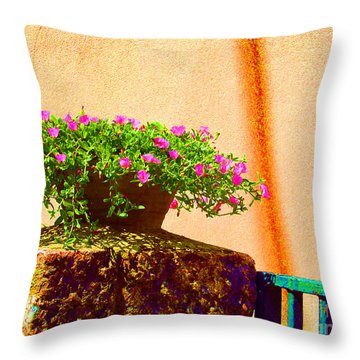 Pink Potted Flowers And Bench Throw Pillow by Tina M Wenger