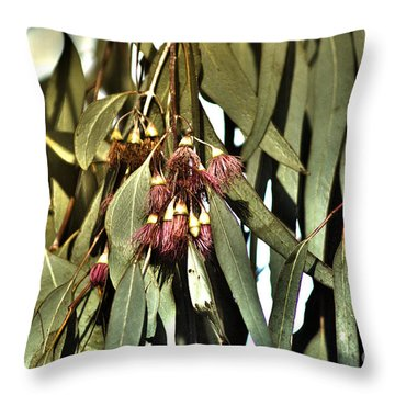 Throw Pillow featuring the photograph Pink Princess by Cassandra Buckley