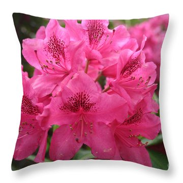 Pink Rhododendron Bloom Throw Pillow