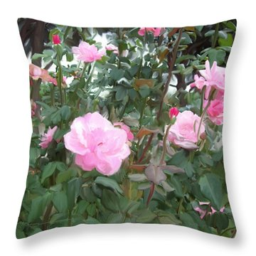 Pink Rose Garden Throw Pillow