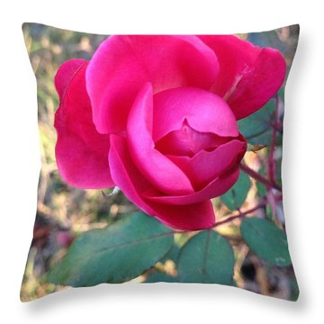 Throw Pillow featuring the photograph Pink Rose by Rose Wang