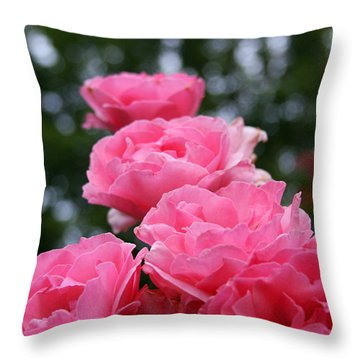Throw Pillow featuring the photograph Pink Roses At Sunset by Vadim Levin