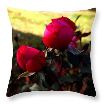 Throw Pillow featuring the photograph Pink Roses by Rose Wang