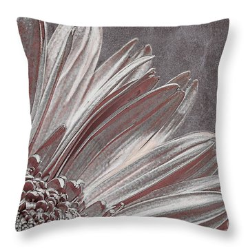 Pink Silver Throw Pillow by Lois Bryan