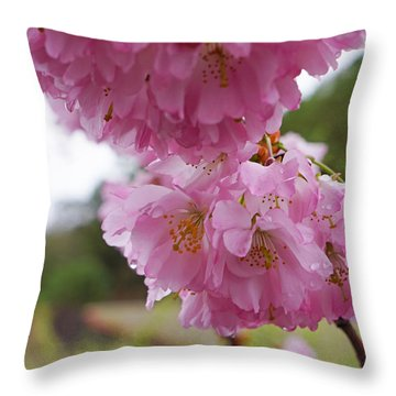 Pink Spring Tree Blossoms Art Prints Throw Pillow by Baslee Troutman