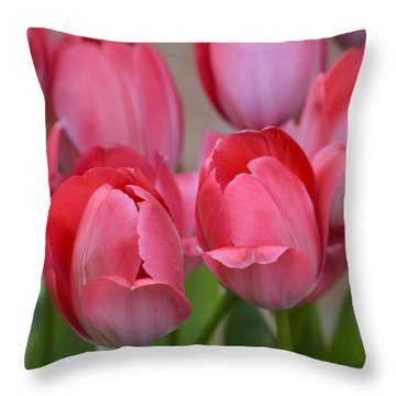 Pink Spring Tulips Throw Pillow