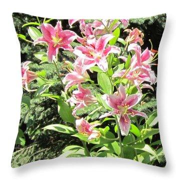 Pink Stargazer Lilies-greeting Card Throw Pillow
