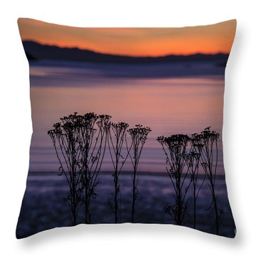 Pink Sunset Throw Pillow