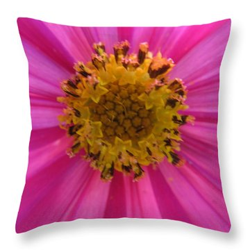 Throw Pillow featuring the photograph Pink by Tina M Wenger