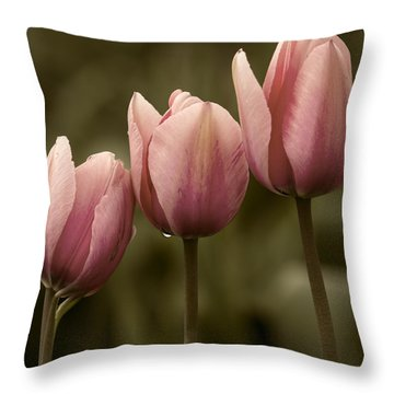 Pink Trio Throw Pillow by Sonya Lang