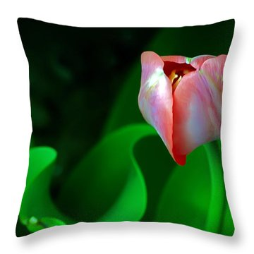 Pink Tulip Throw Pillow by Brian Wallace