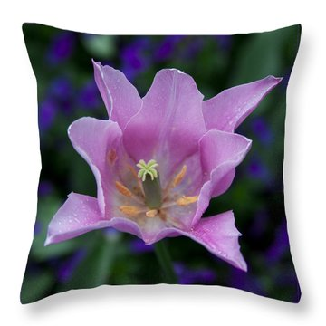 Pink Tulip Flower With A Spot Of Green Fine Art Floral Photography Print Throw Pillow