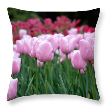 Pink Tulip Garden Throw Pillow by Jennifer Ancker