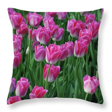 Throw Pillow featuring the photograph Pink Tulips 2 by Allen Beatty