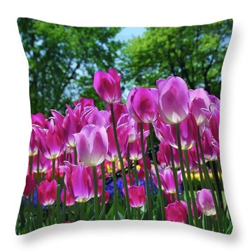 Throw Pillow featuring the photograph Pink Tulips by Allen Beatty