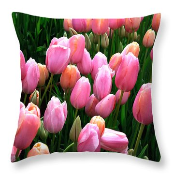 Throw Pillow featuring the photograph Pink Tulips by Haleh Mahbod
