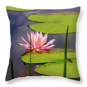 Pink Water Lily And Dragonfly Throw Pillow by Sherman Perry