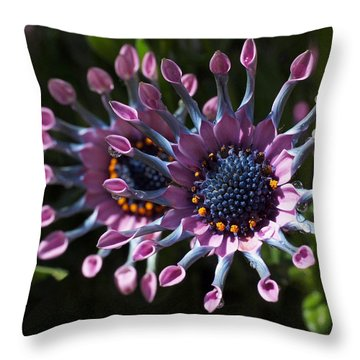 Pink Whirls Throw Pillow by Rona Black