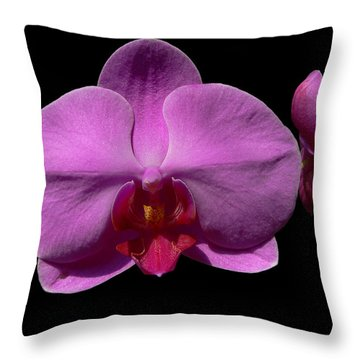 Pinkard Throw Pillow by Doug Norkum