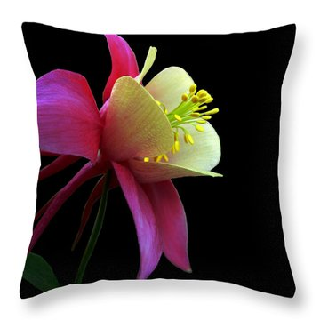 Pinkish Throw Pillow
