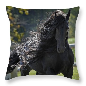 Pinnacle Of Friesians Throw Pillow