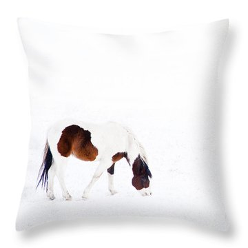 Pinto Pony Throw Pillow by Theresa Tahara